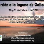 Gallocanta-20-y-21-02-2016-