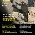 Poster-Falco-de-la-reina-20