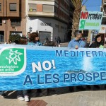 Manifestacio-i-22-02-2014-