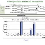 Abejero-a-taula-2003-2014-U