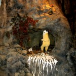 Eco-a-Museo-IMG_5714