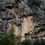 Hf-Nius-Perdicera-Vilanova-