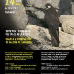 Poster-Falco--14-07-2016
