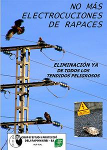 electrocuciones